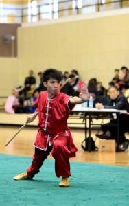 第15屆學界武術賽
